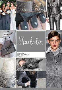pantone cinza